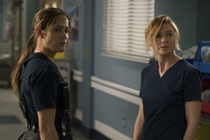Grey's Anatomy e Station 19: os grandes sucessos da ABC são renovados para novas temporadas